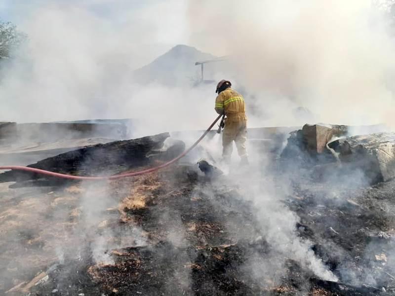 El fuego consumió las instalaciones del aserradero ubicado en Montemorelos.