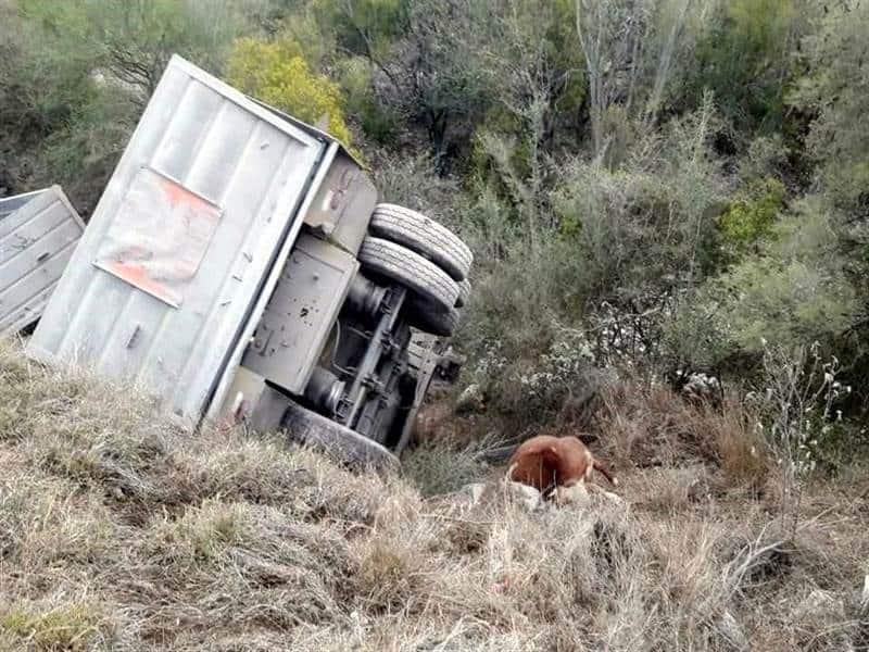 El trailero fallecido intentaba salvar una vaca