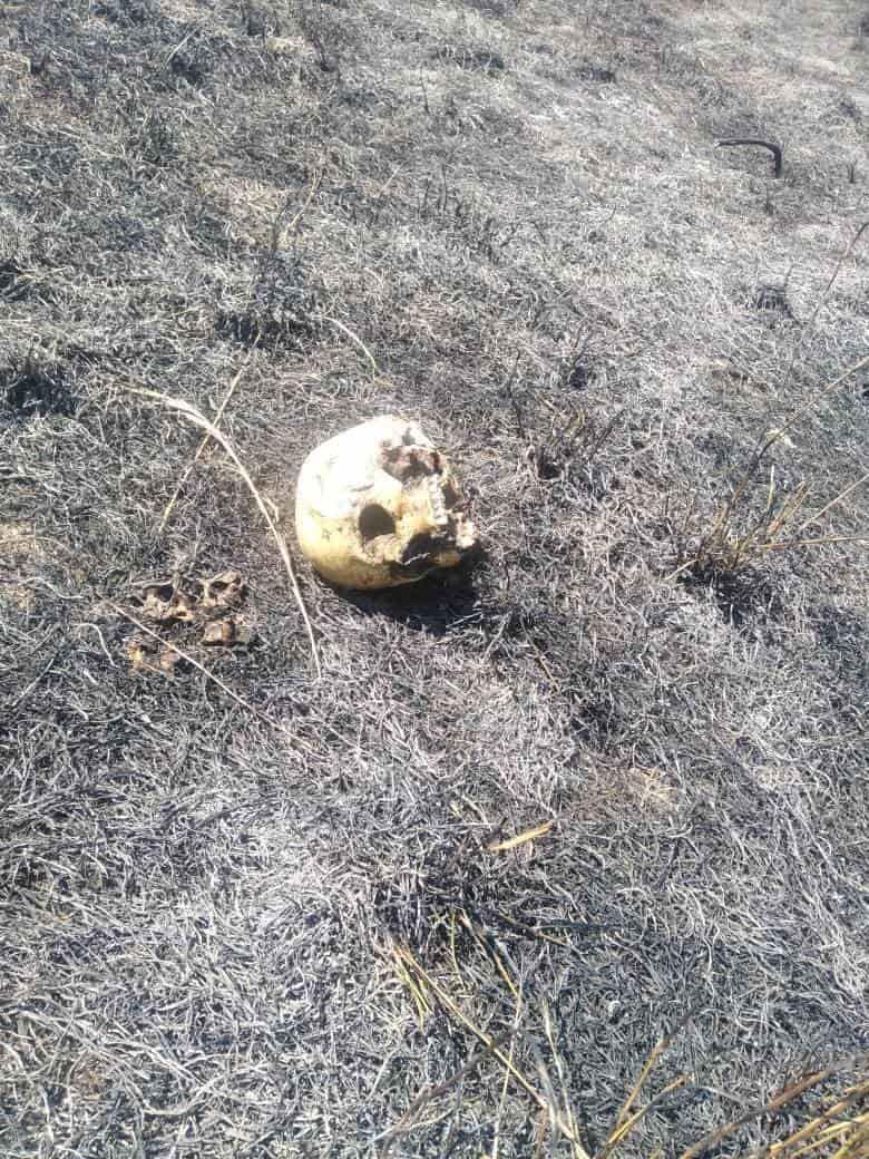 Los restos humanos fueron descubiertos mientras controlaban un incendio