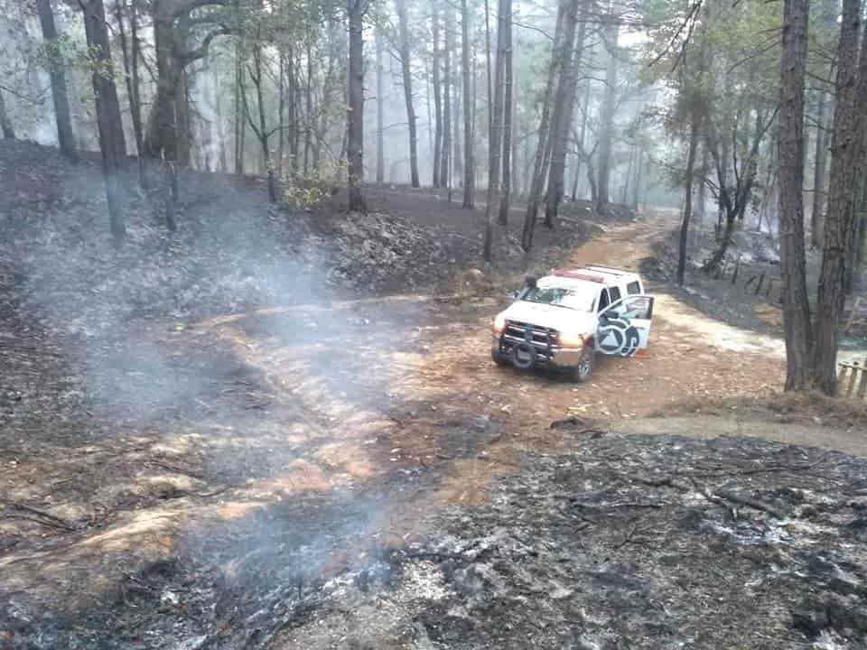 Lograron controlar el incendio en el municipio de Santiago