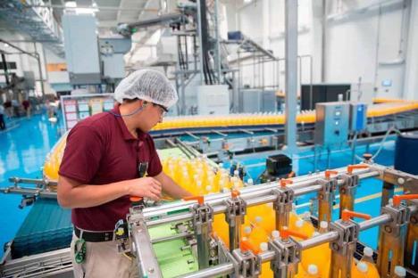 PIB caerá entre 4.6 y 8.8 %: Banxico