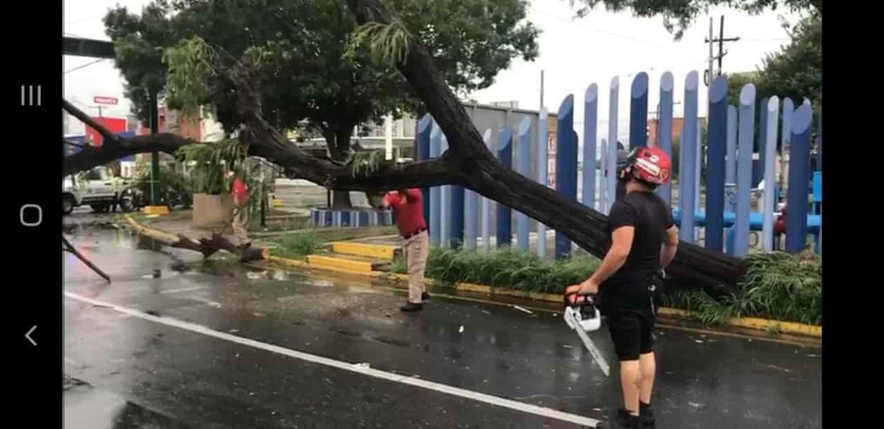 Hanna ocasiona diversos daños a estructuras, cierres viales y caída de árboles.