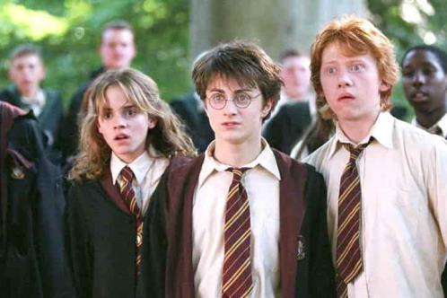 Sí habrá serie de Harry