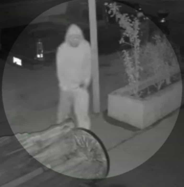 Dos delincuentes robaron una banca artesanal del interior de una taquería