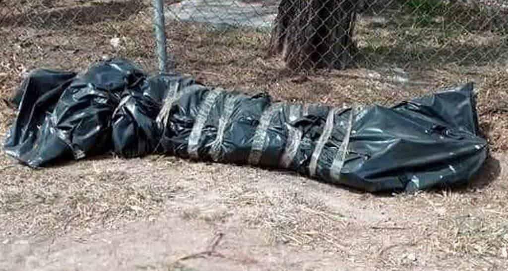 Reportaron el hallazgo de una bolsa negra encintada