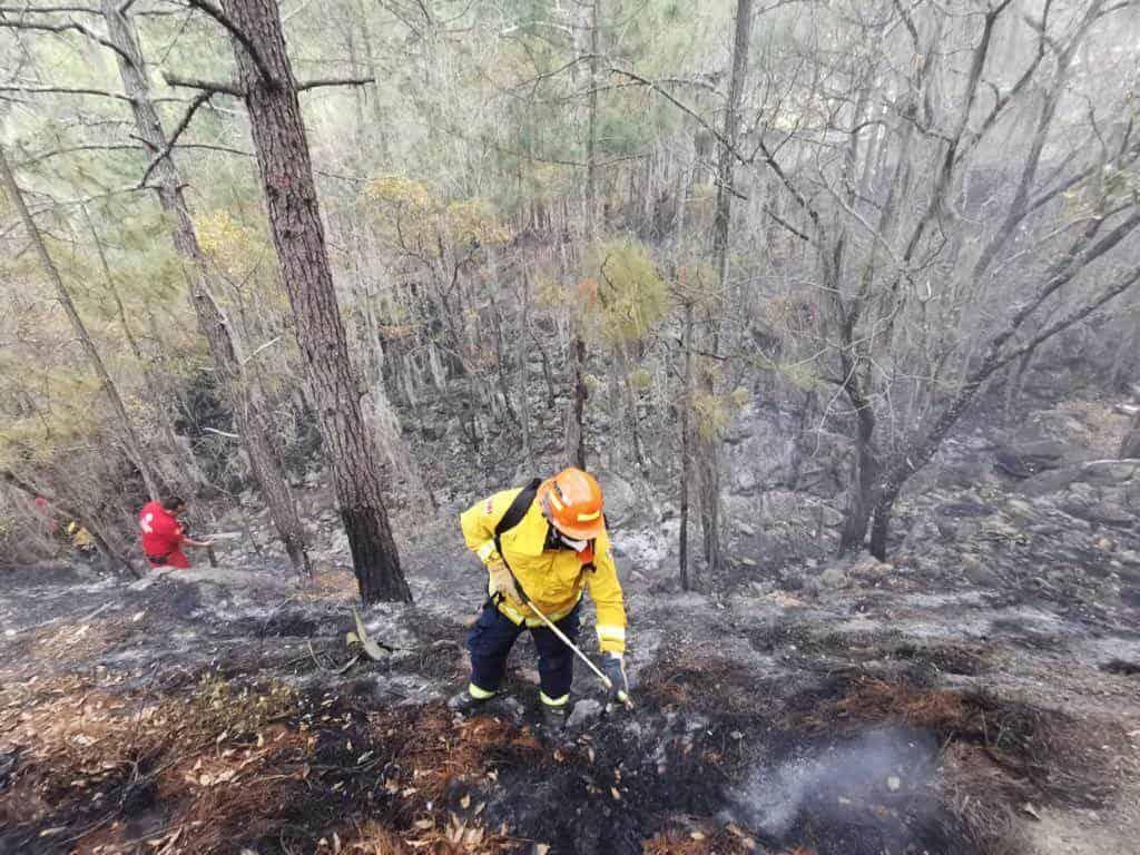 Más de 120 brigadistas, dos helicópteros y unidades todo terreno se despliega para el combate de tres incendios forestales en el municipio de Galeana