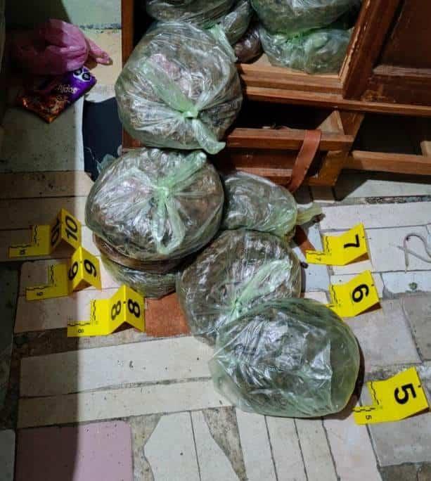 Al menos 45 kilos de marihuana, una báscula, así como una libreta con información, fue lo asegurado en el cateo