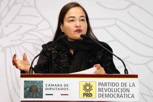Exige PRD investigar a Irma Eréndira Sandoval