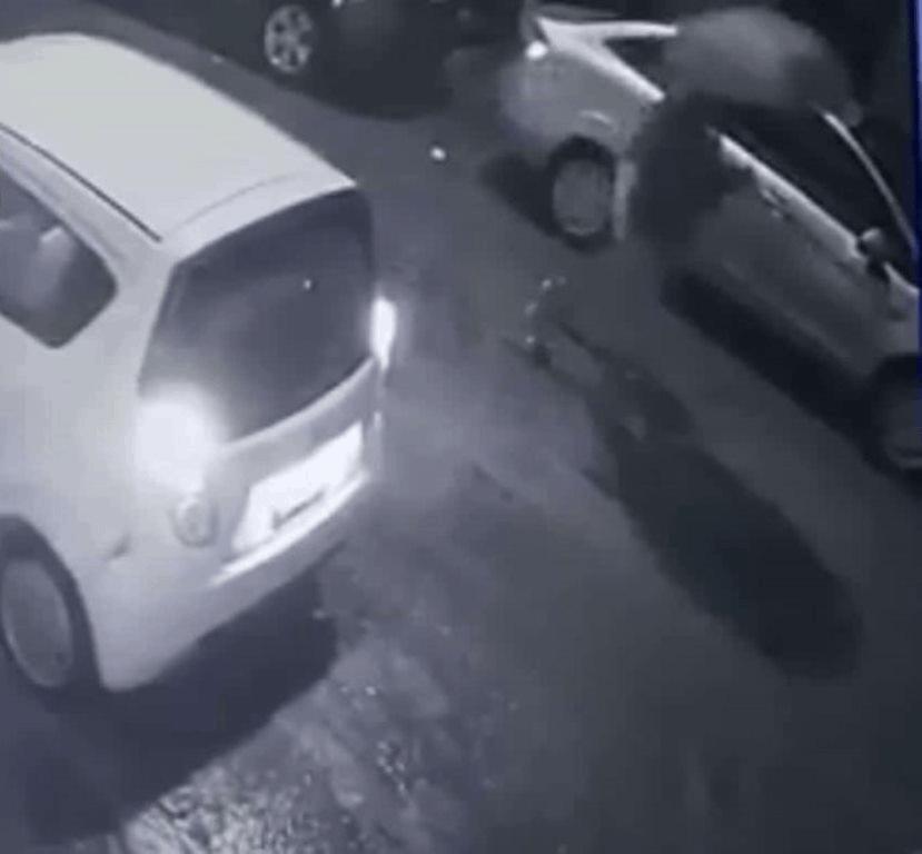 La FGJE logró obtener un video que captó a la pareja, que dejó abandonado el cuerpo de una bebita sin vida