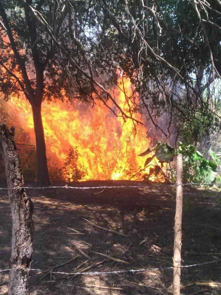 Dos niños que jugaban a los exploradores, causaron un incendio forestal