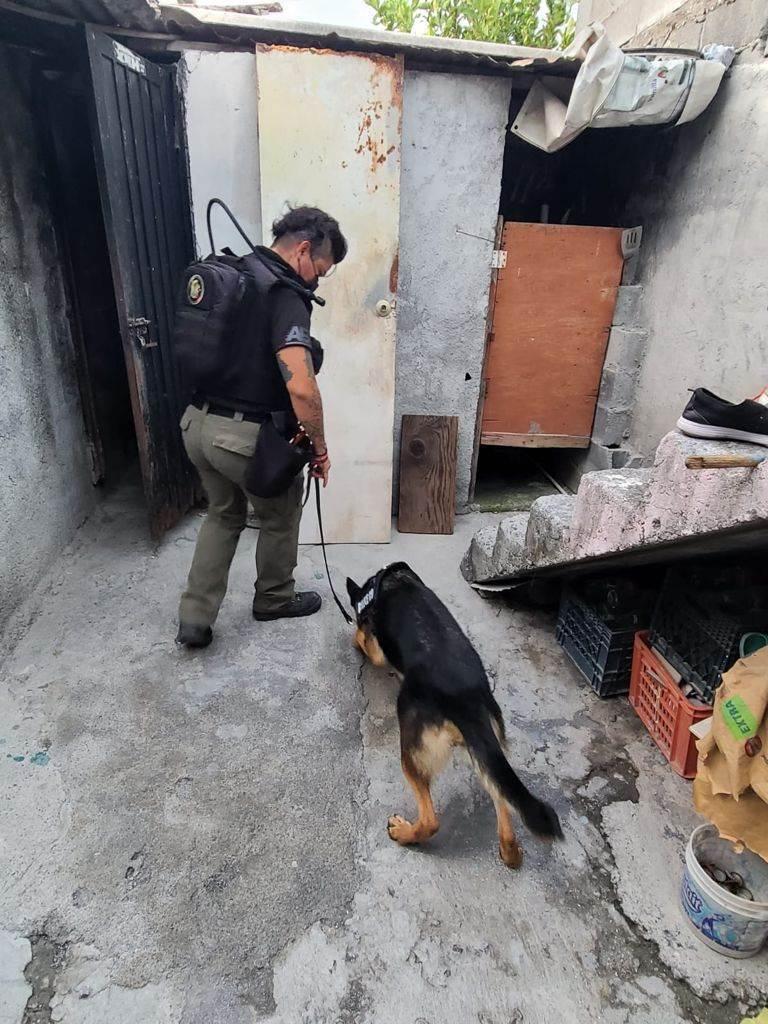 Arrestaron a dos personas y aseguraron droga, así como un arma de fuego, en dos cateos