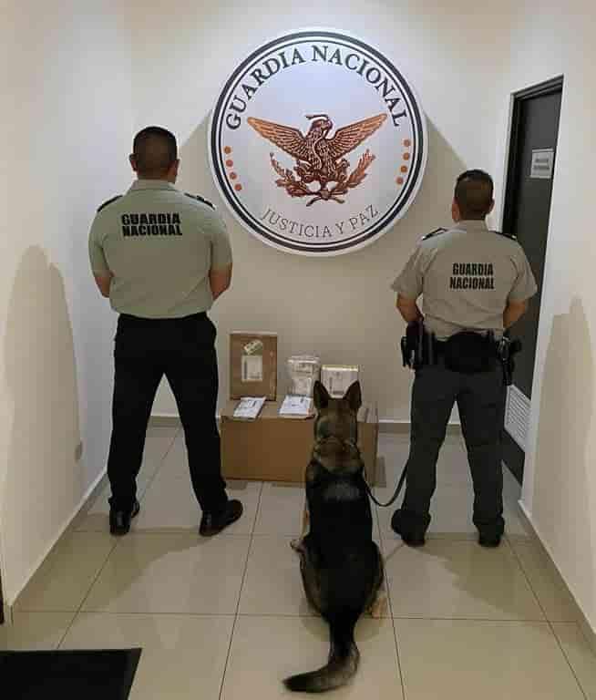 La Delincuencia Organizada, está utilizando una empresa de mensajería, para enviar droga a diversos estados