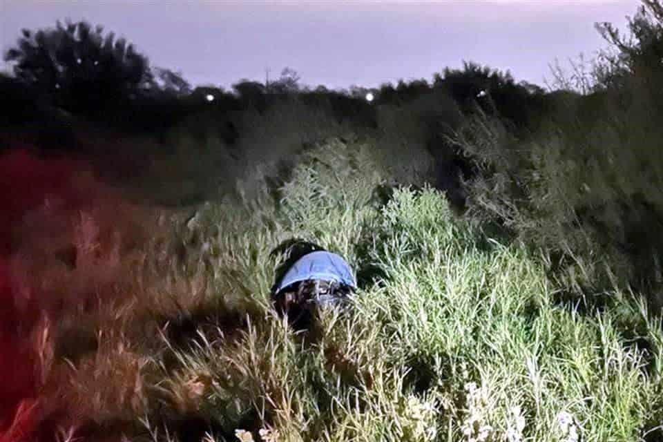 Unos perros callejeros descubrieron el cuerpo de una persona que fue ejecutada y abandonada dentro de un tambo